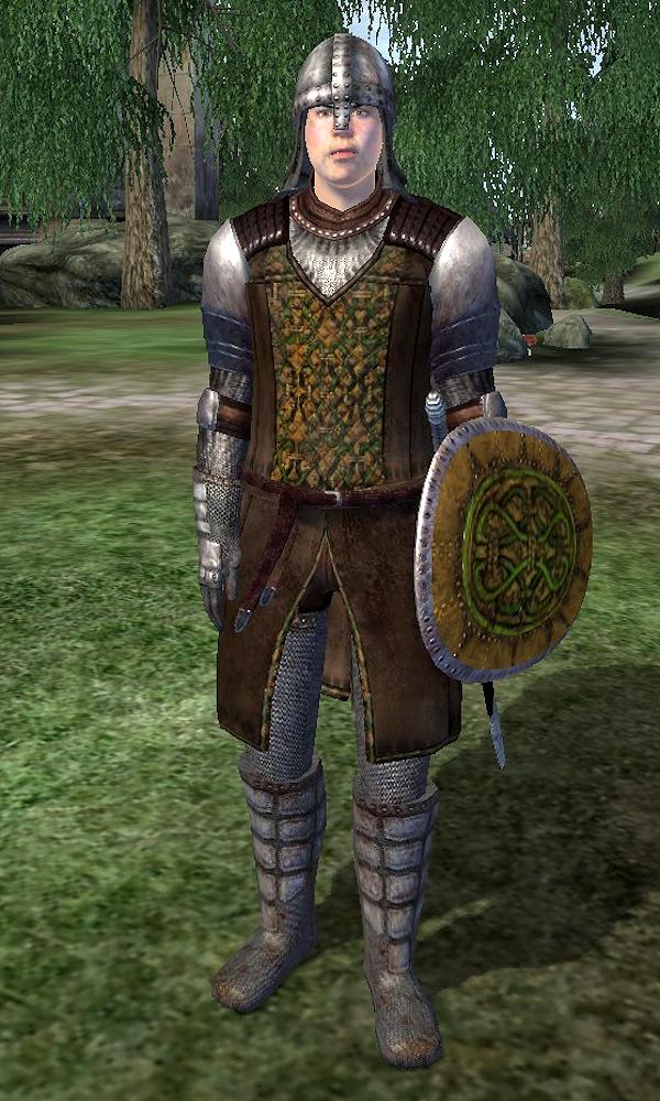 Cheydinhal Gate Guard