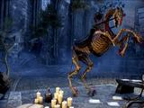 Skeletal Horse