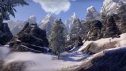 Skyrim (Online)