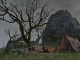 The Wolf's Camp