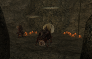 Яичная шахта Хавии 7