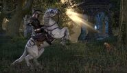 White Imperial Horse