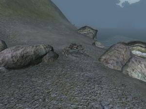 Грязевой краб (Oblivion) 3