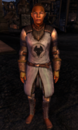 TESIV Guard Kvatch 2