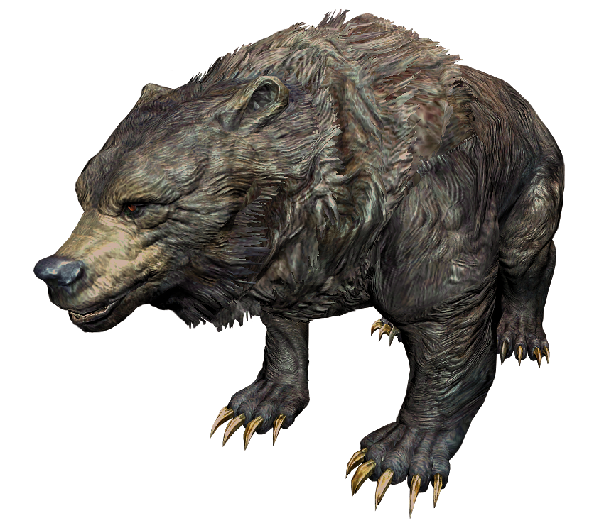 Медведь (Skyrim)