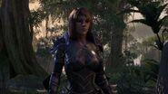 Bosmer - Elder Scrolls Online