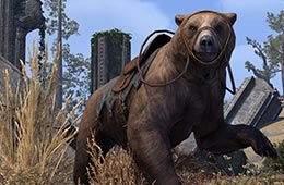 Cave Bear (Mount)