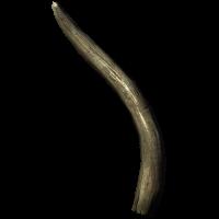 Zanna di mammut