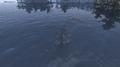 Ruined Shrine of Boethiah Above water Morrowind