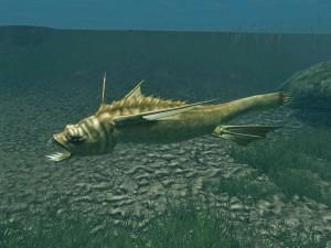 Rumare Slaughterfish