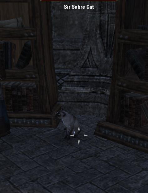 Sir Sabre Cat
