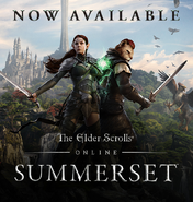 Summerset Steam promo 2