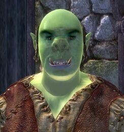 BazurgroGharz face.jpg
