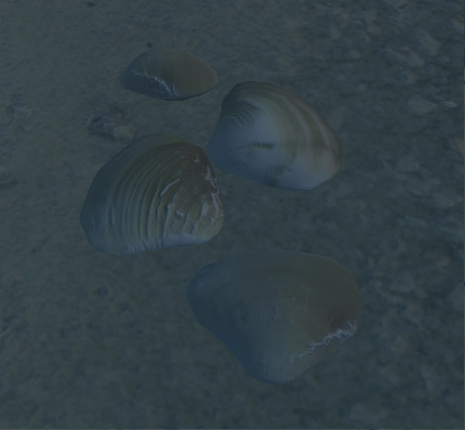Clams (Oblivion)