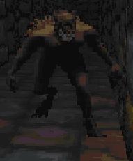 Werewolf (Daggerfall)