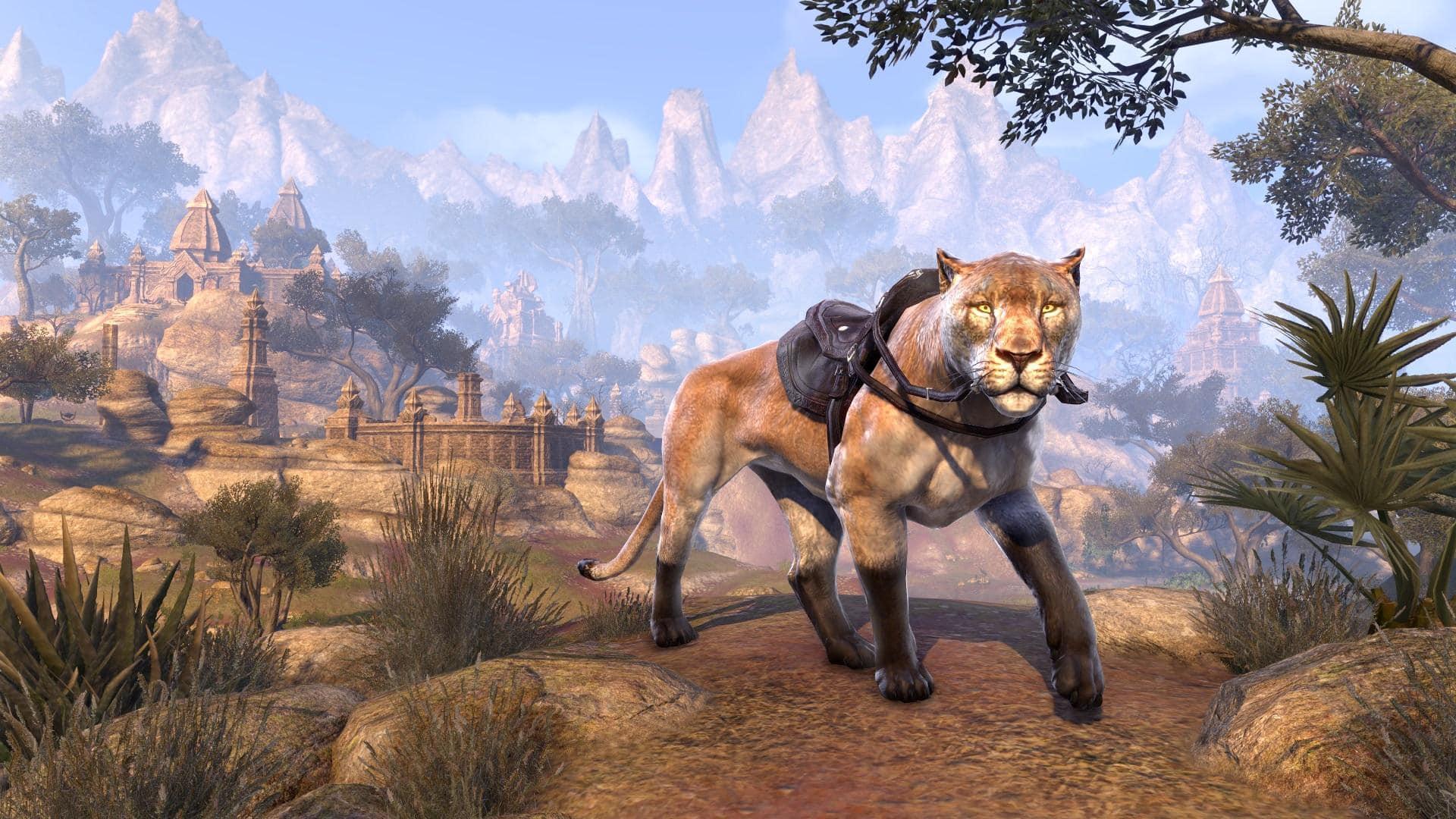 Senche-Cougar
