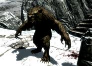 Werebear at Snowclad Ruins