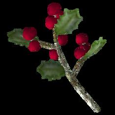 Снежные ягоды.png
