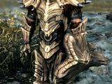 Dragonplate Armor (Skyrim Set)