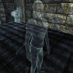 Призрак Вайтарна - Лучница.jpg