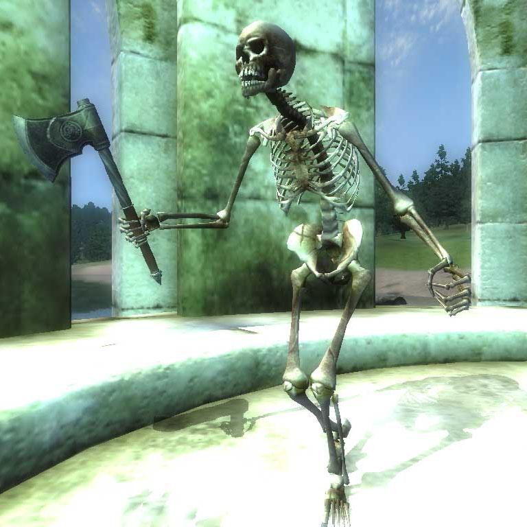 Скелет (Oblivion)