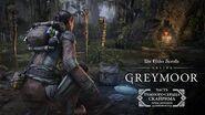 The Elder Scrolls Online Greymoor — поиски реликвий
