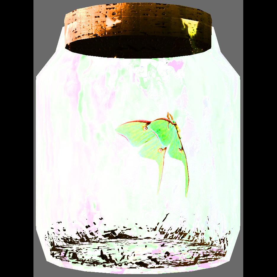 Moth in a Jar