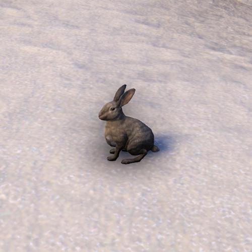 Кролик (Online)