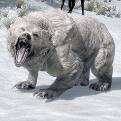 Снежный медведь.jpg