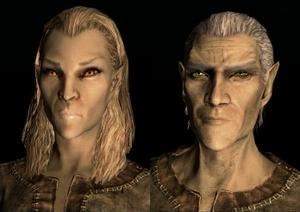 Elf wysokiego rodu (Skyrim).png