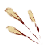 Зёрна пшеницы
