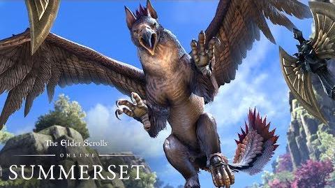 The Elder Scrolls Online Summerset – видеоролик игрового процесса