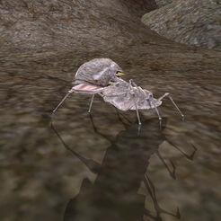 MW-creature-Scrib.jpg