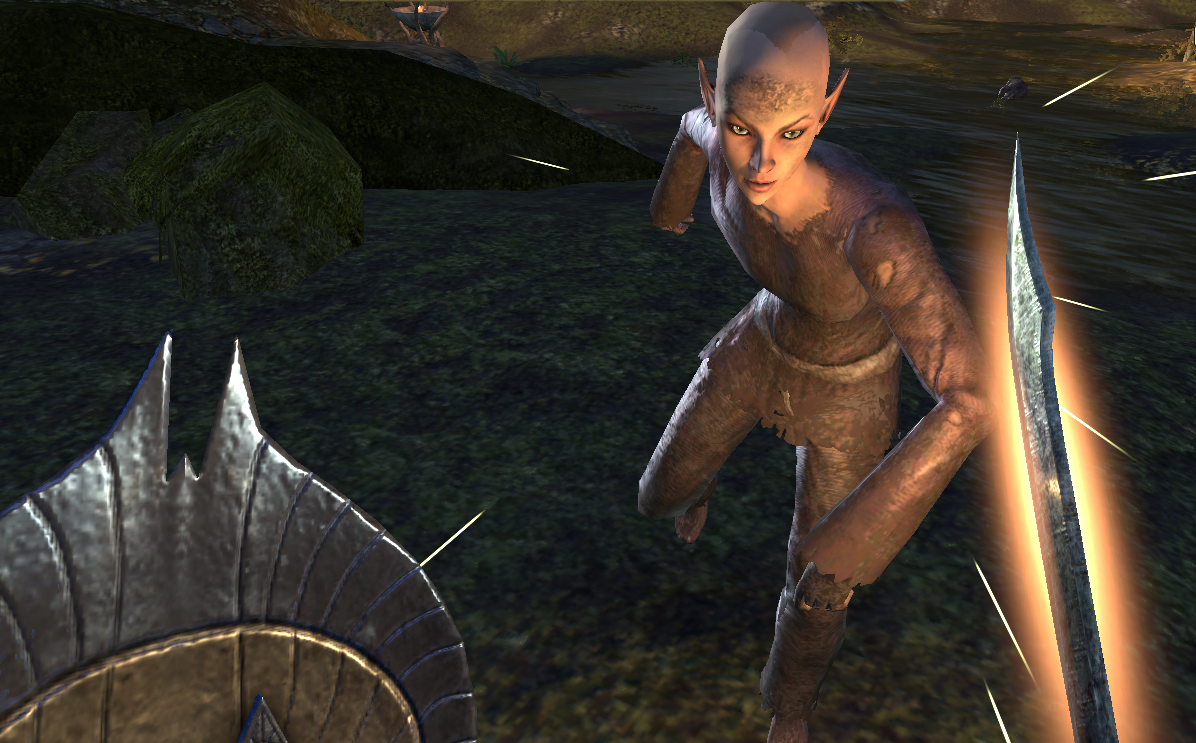 The Blight of the Bosmer