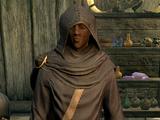 Falion (Skyrim)