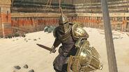 The Elder Scrolls Blades grafika promocyjna 2