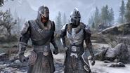 The Elder Scrolls Online Greymoor Nord 1