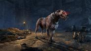 The Elder Scrolls Online Greymoor Todeshund