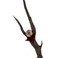 Sheogoraths Stab
