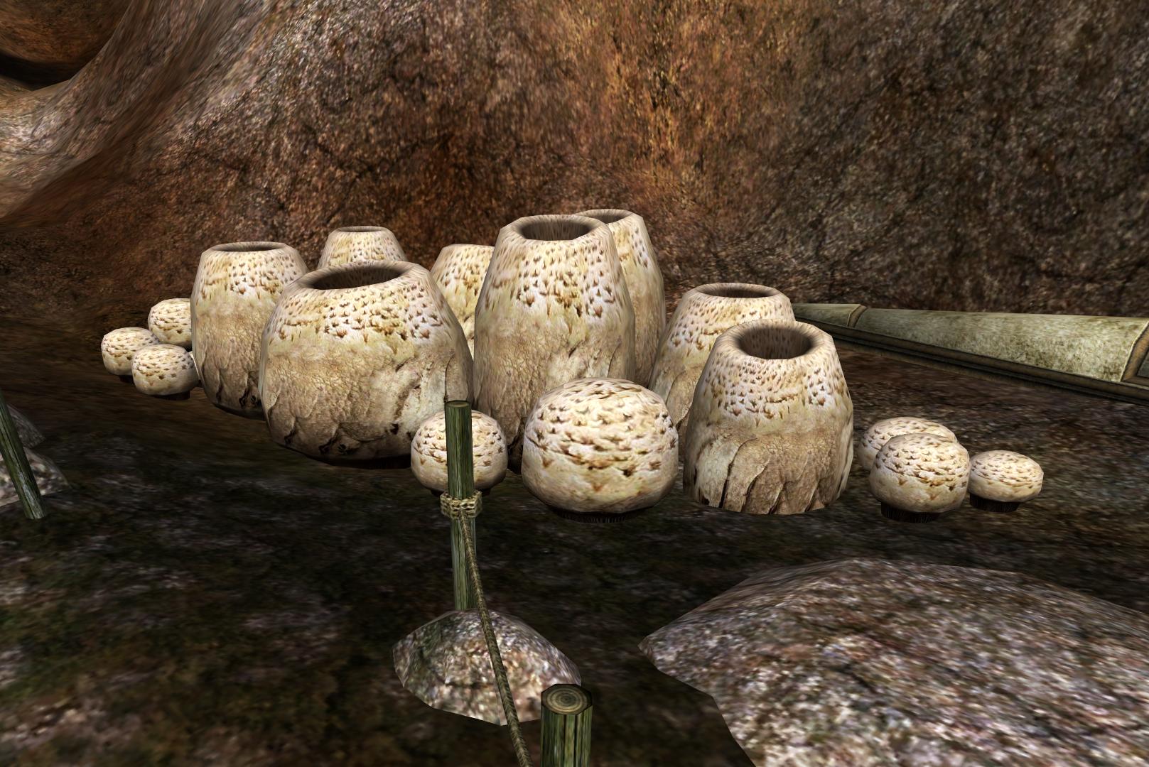 Gnisis (Morrowind)