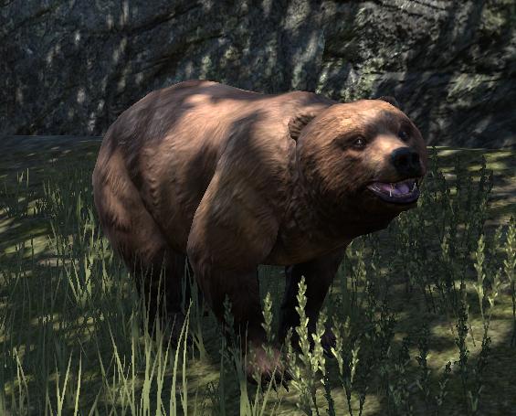Bär (Online)