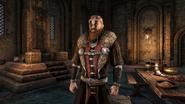 The Elder Scrolls Online Greymoor Jarlputz