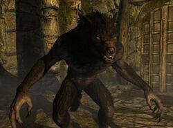 Werewolf-skyrim.jpg