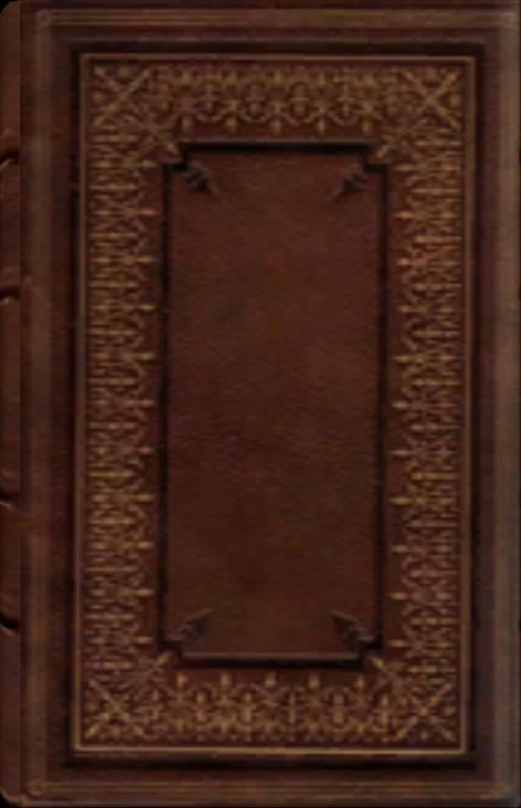 Amantius Allectus' Tagebuch
