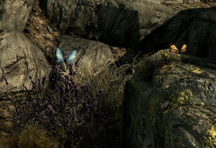 Schmetterling (Skyrim)