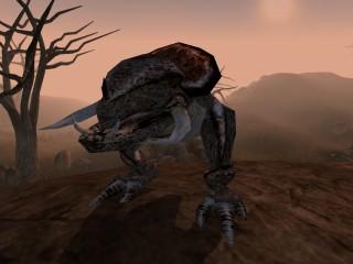 Kagouti (Morrowind)