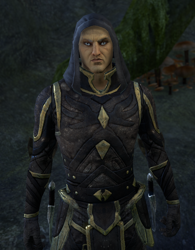 Faust des Thalmor (Person)