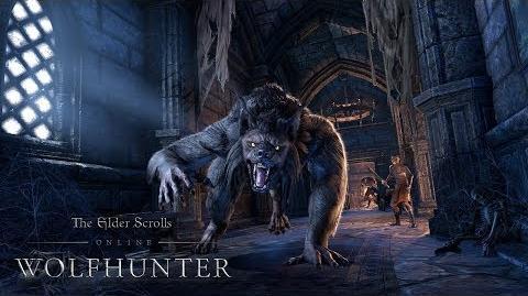 The Elder Scrolls Online Wolfhunter – Offizieller Trailer