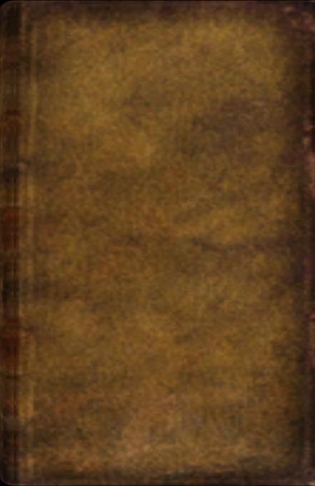 Agnars Tagebuch