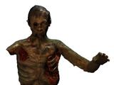 Зомбі (Oblivion)